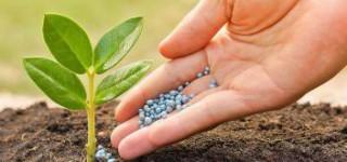 Новый регламент «О требованиях к минеральным удобрениям» вышел в свет